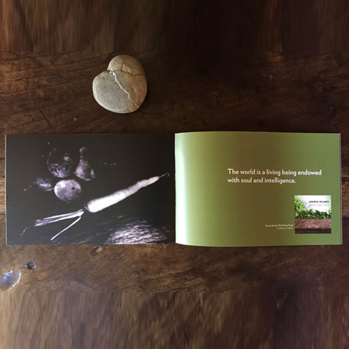Product catalog. Media company. CONCEPT, DESIGN, PHOTOGRAPHY, PRODUCTION.
